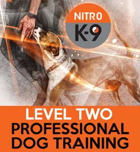 Nitro K9 Level 2 Professional Dog Training