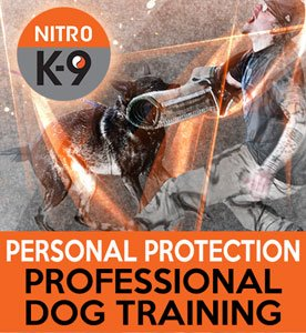 Nitro K9 Personal Protection Professional Dog Training